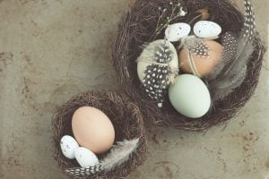 easter-feather-egg